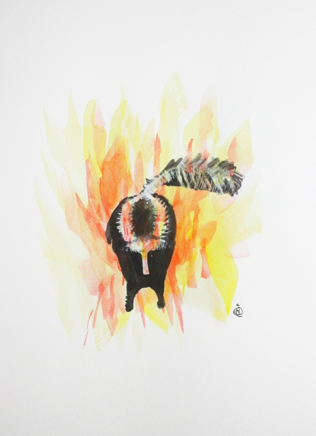 "Skunk on Fire #1 Ink and Watercolor 15"" x 11"""